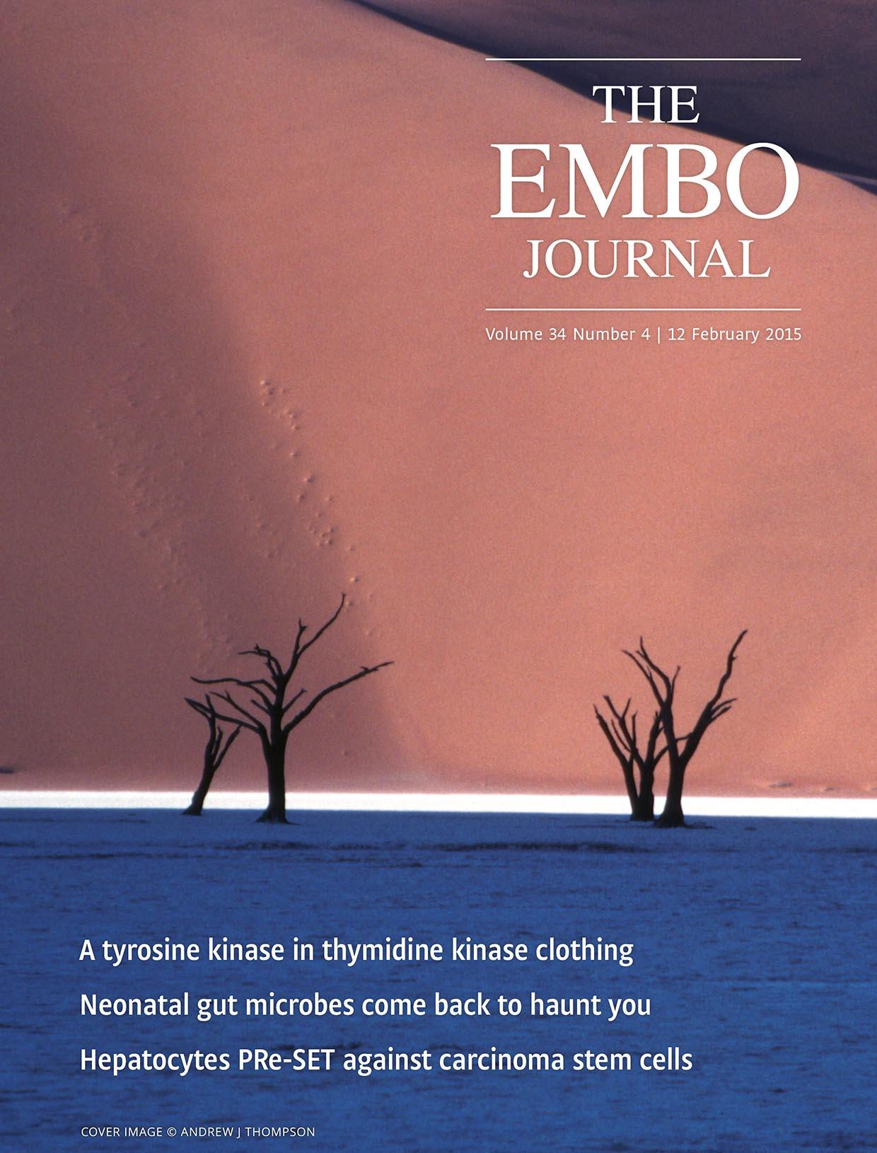 EMBO Cover.jpg